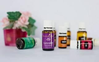Что можно добавить в шампунь: витамины, масла и народные средства, выбираем что лучше подойдет для ваших волос